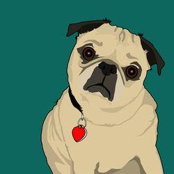 Leeloo-portrait